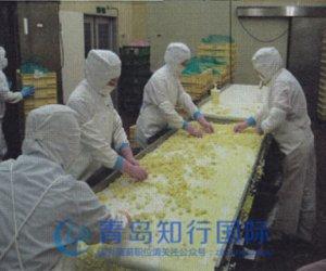 赴日本爱知县技能实习生-土豆泥