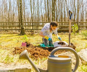 赴日本和歌山县技能实习生-种花工