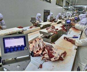 赴新西兰— (牛羊猪)剔骨、修肉工10人