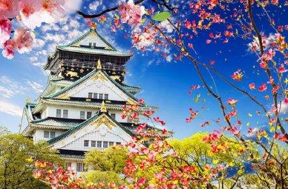 马上要去日本工作,可你真的了解日本的工签政策吗?
