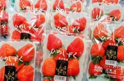 「日本节庆」日日都是好日!日本趣味谐音节日