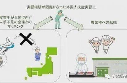 """日本新规:不能回国的技能实习生可跨行""""跳槽"""" 最长可延长工作1年?"""