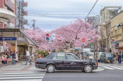 日本考驾照有多严?犯任何一点错误就被终结