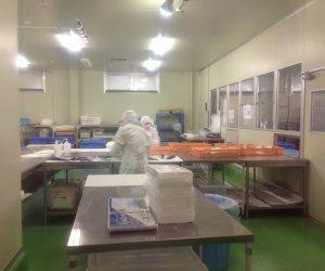 日本和歌山海产—食品加工职