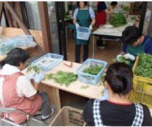 日本徳島県农业工