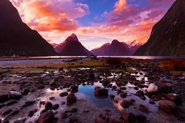 新西兰,告诉你些你不知道的